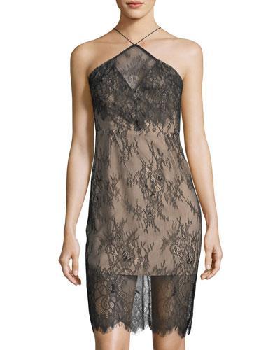 Keepsake Great Love Lace Halter Dress In Black