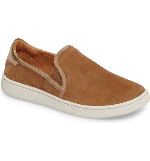 1c7ed6f4c79 Ugg Women's Cas Leather Slip On Sneakers In Chestnut Suede   ModeSens