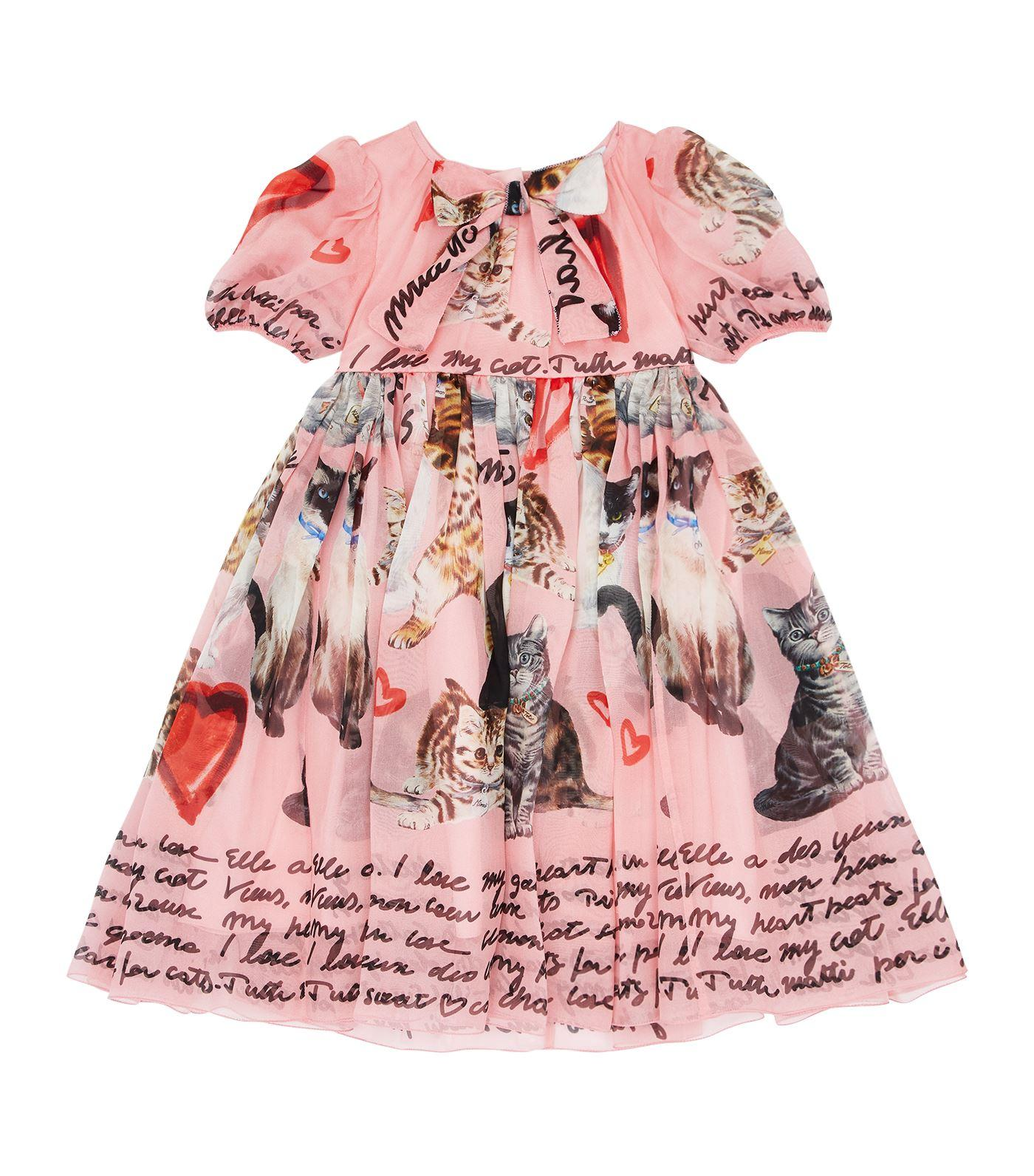 Dolce & Gabbana Cat Print Silk Dress With Bloomers In Multi