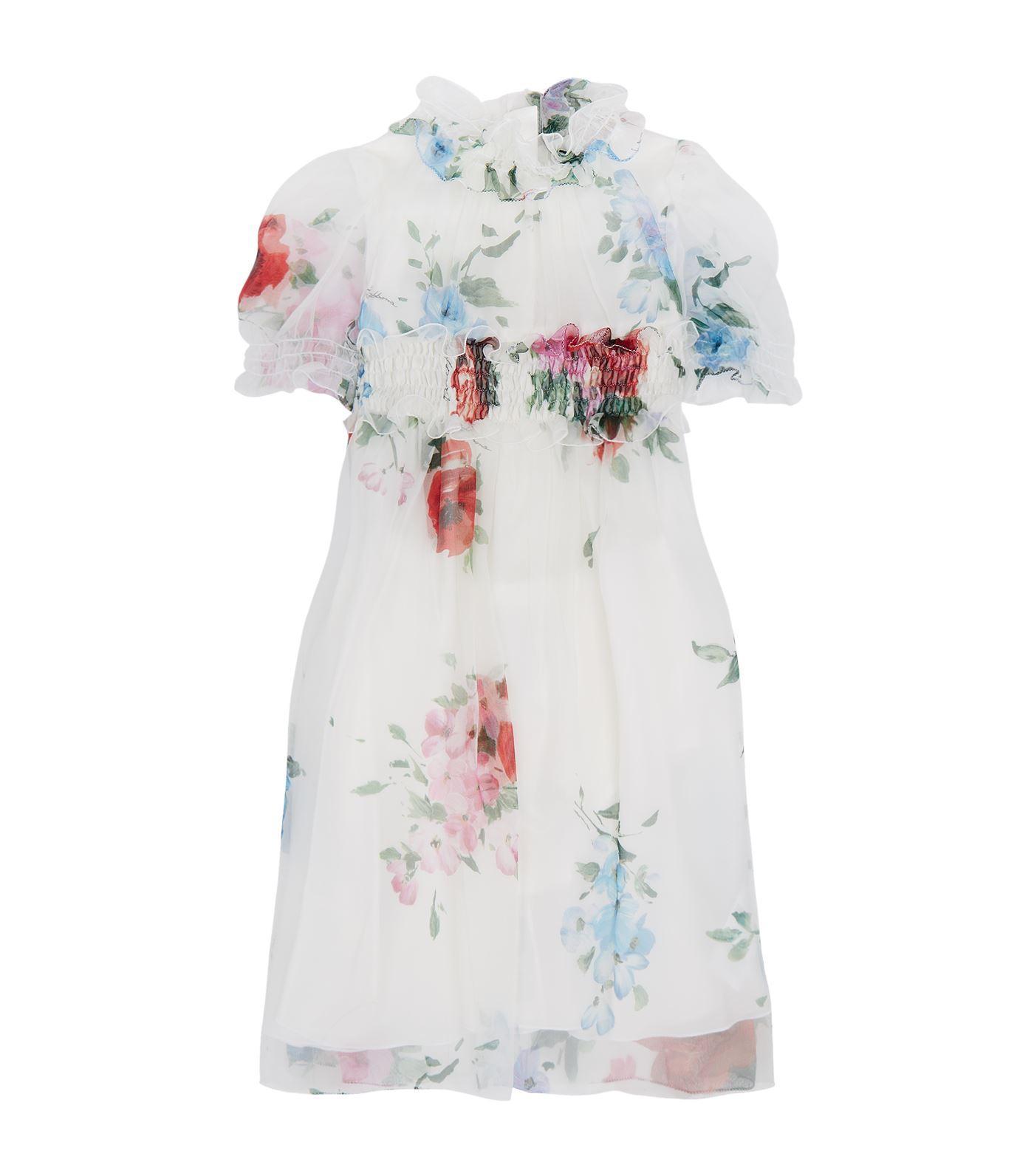 Dolce & Gabbana Floral Print Chiffon Dress In Multi