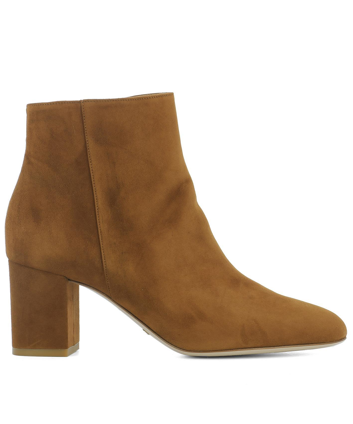 Sebastian Brown Suede Ankle Boots