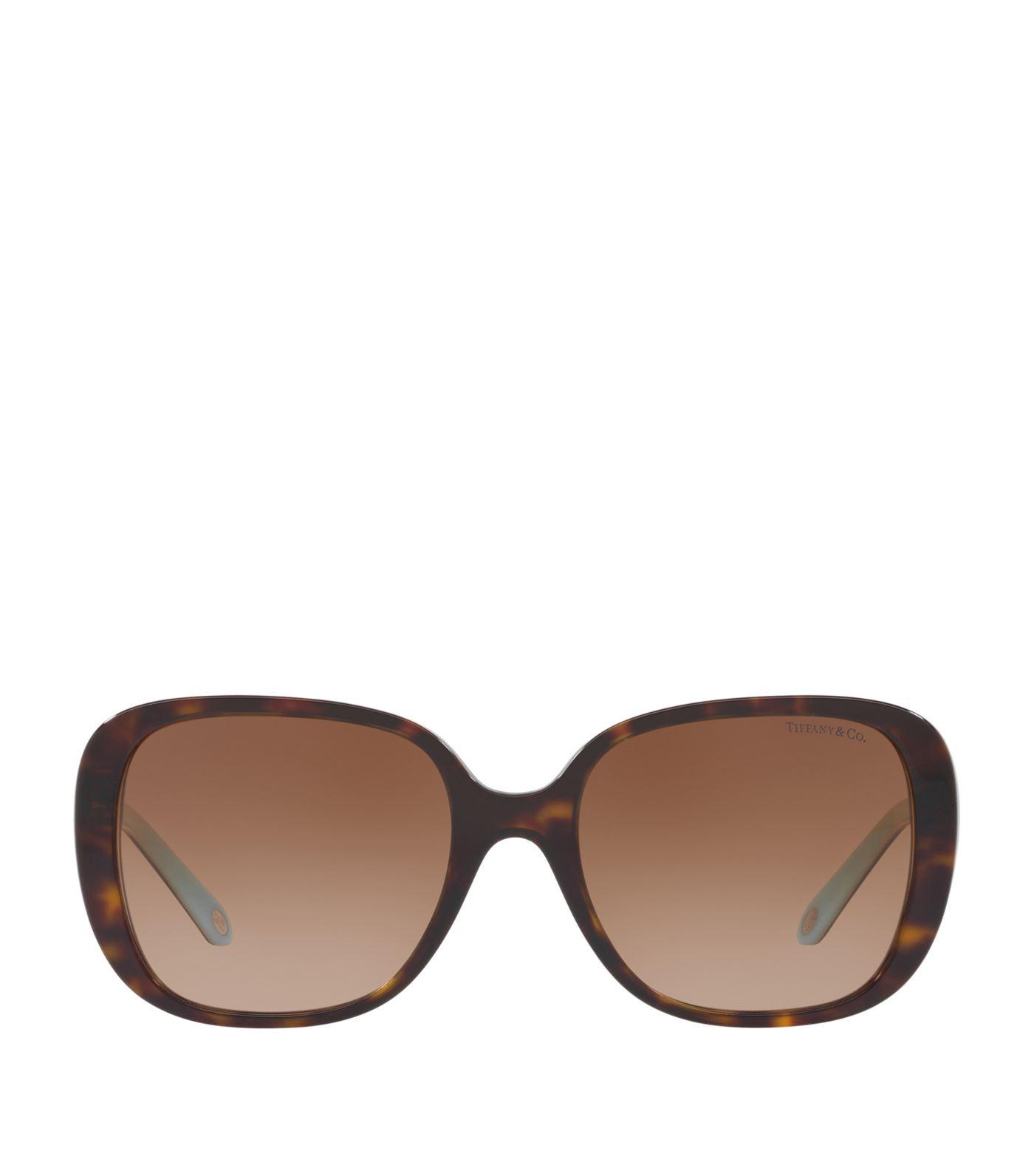 4598cb00c5a Tiffany   Co 54Mm Gradient Sunglasses - Dark Havana In Brown