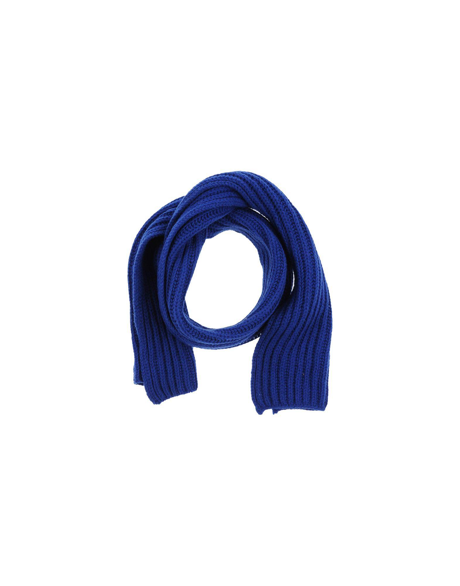Altea Oblong Scarves In Blue