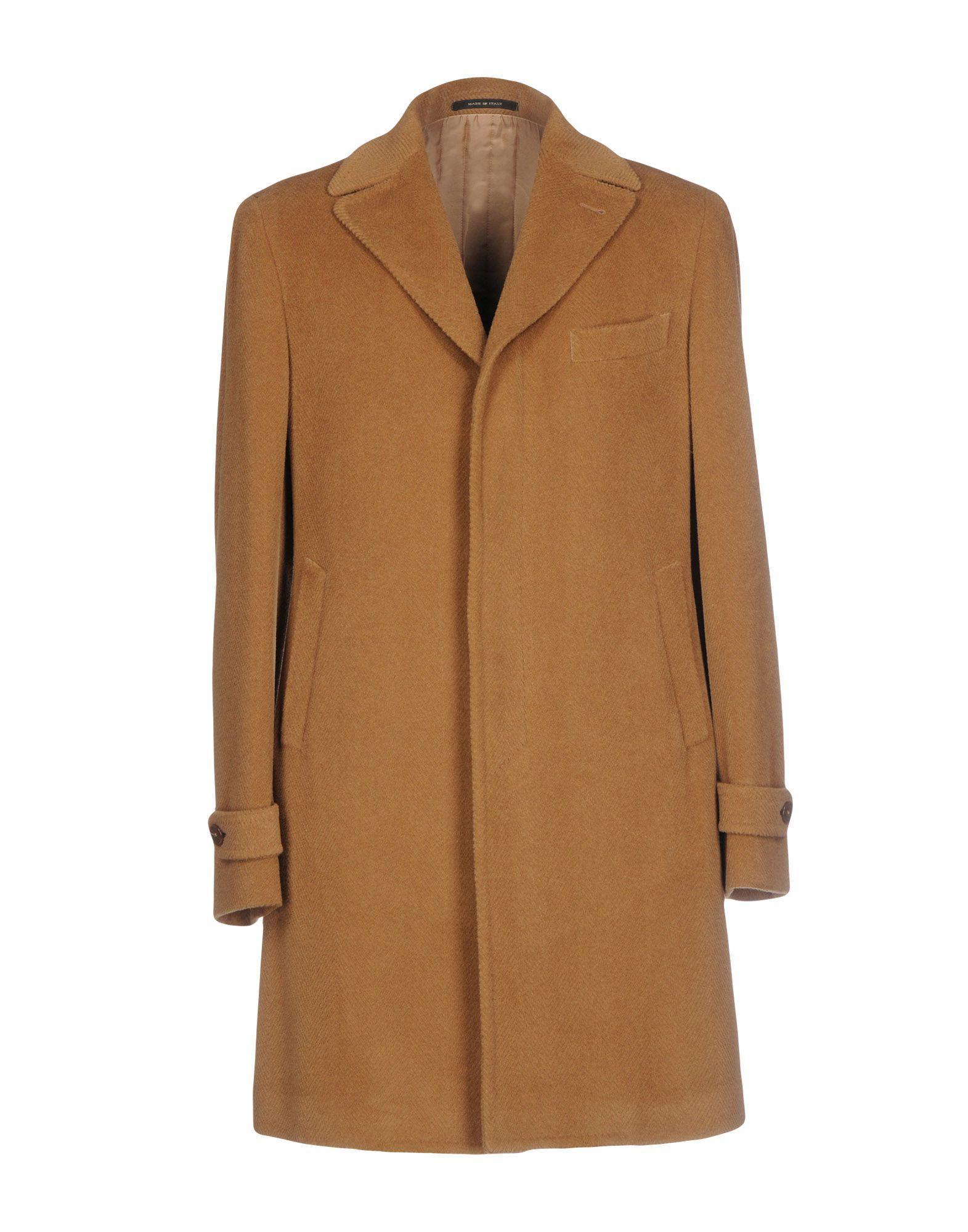 Tagliatore Coats In Camel