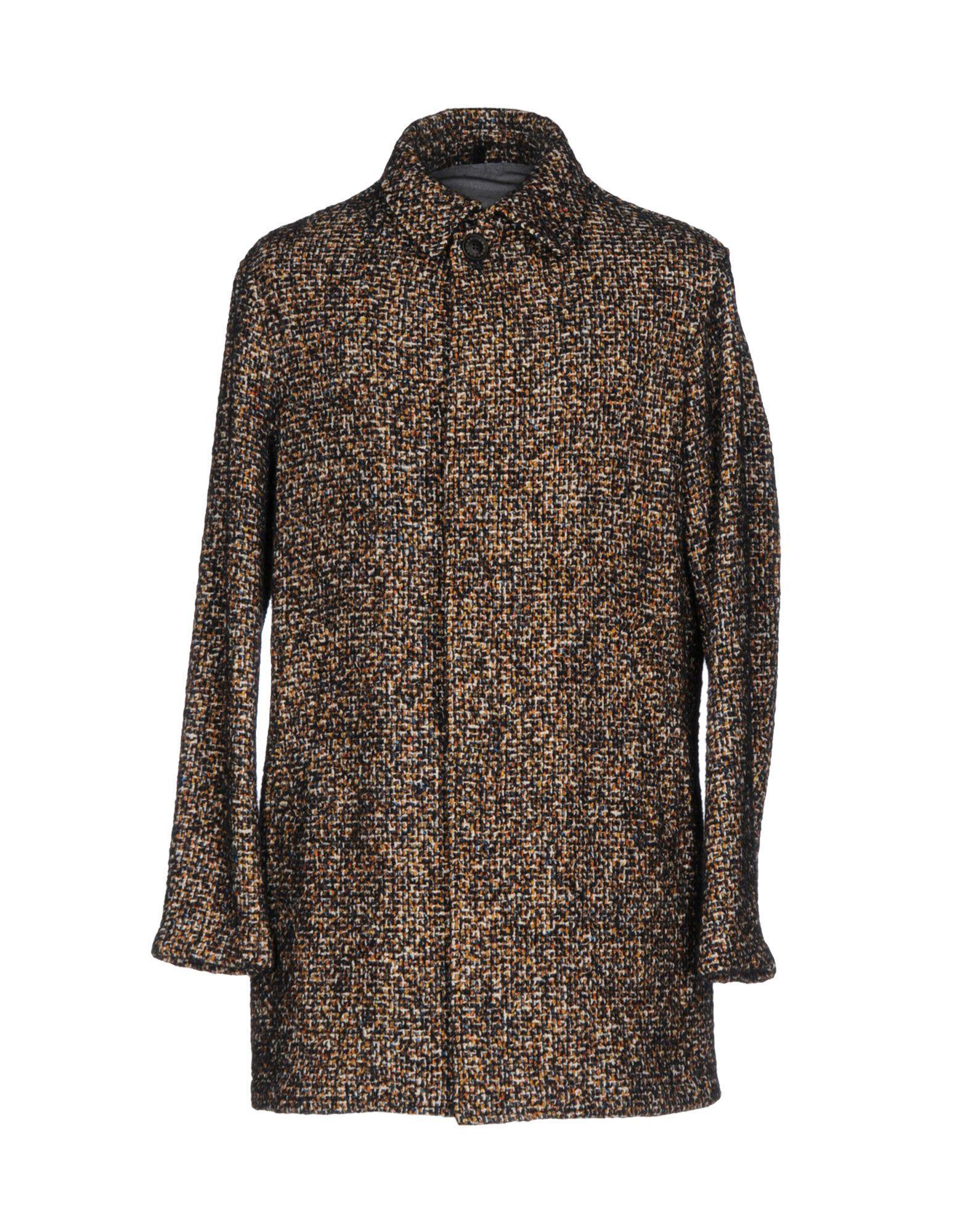 T-jacket Coat In Brown