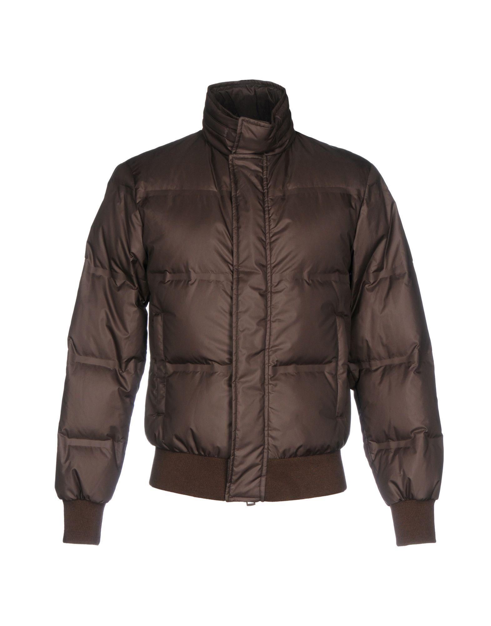 Kired Down Jackets In Dark Brown