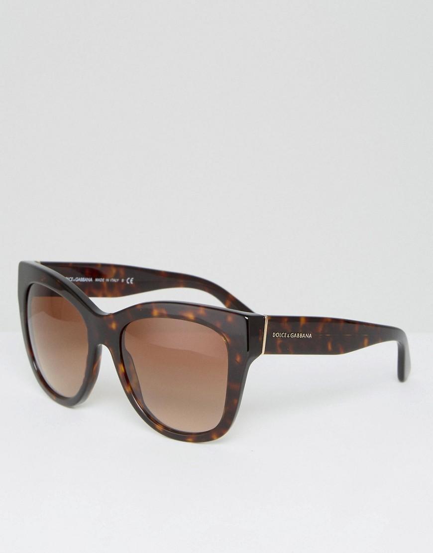 3bfb507b2ac Dolce   Gabbana Oversized Cat Eye Sunglasses In Tort 55Mm - Brown ...