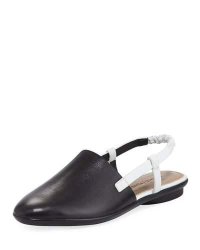 6e8f11a64 Donald J Pliner Maci Two-Tone Slingback Flat In Black