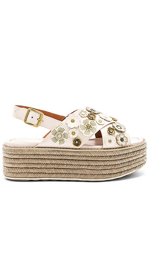 ef10d1ac8f43 Coach Tea Rose Espadrille Sandals In Ivory