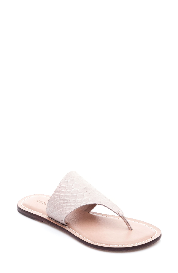 Bernardo Monica Croc Embossed Thong Sandals In Blush Snake Print Leather