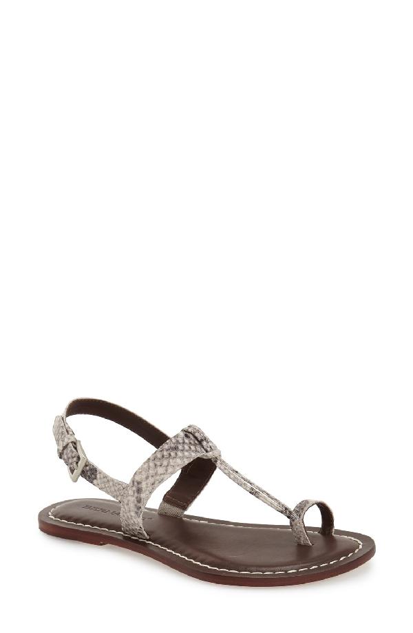 Bernardo Maverick Leather Sandal In Taupe Snake Print