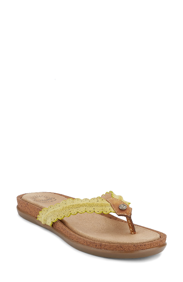 G.h. Bass & Co. G.h. Bass And Co. Samantha Thong Sandal In Yellow