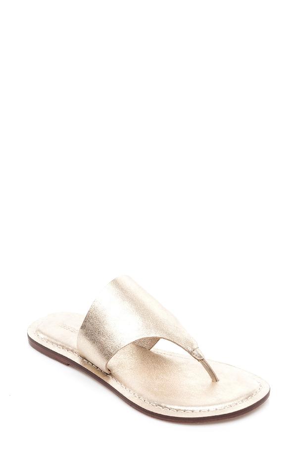 Bernardo Monica Thong Sandal In Gold Leather