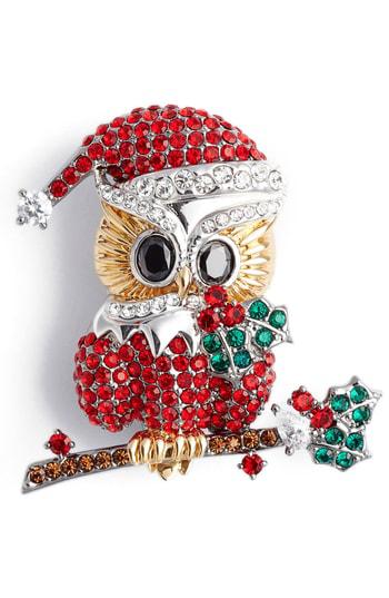 Nadri Jolly Owl Pin In Multi
