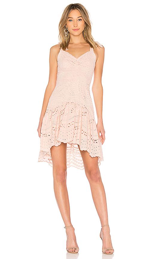 Parker Odysseia Eyelet Cotton Dress In Pearl Blush