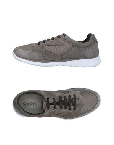 Geox Sneakers In Grey