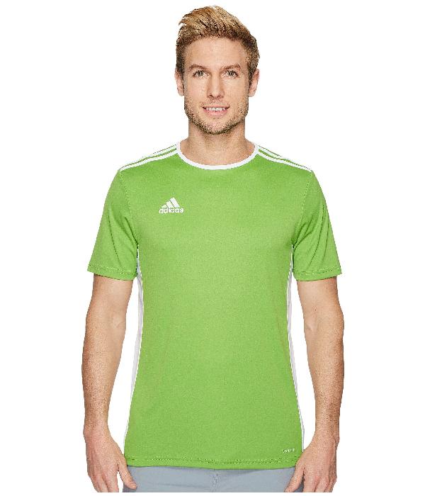 Adidas Originals , Rave Green F08/white