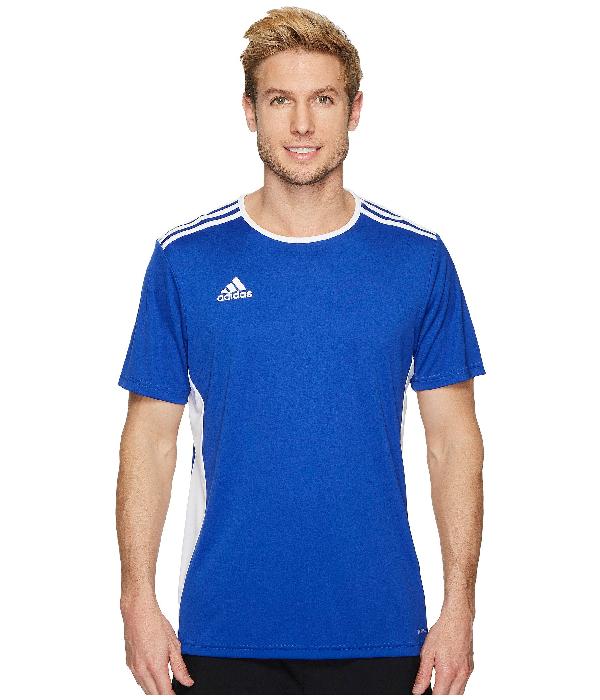 Adidas Originals Entrada 18 Jersey In Bold Blue/white
