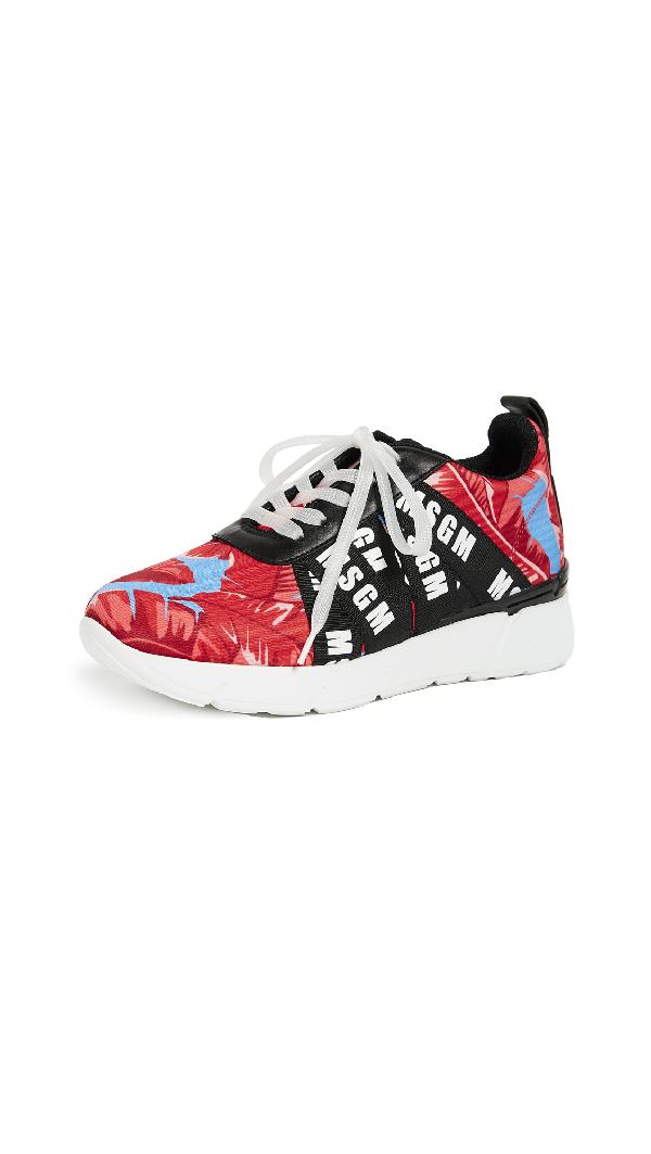 Msgm Multi Strap Runner Sneakers In Black/leaf Print