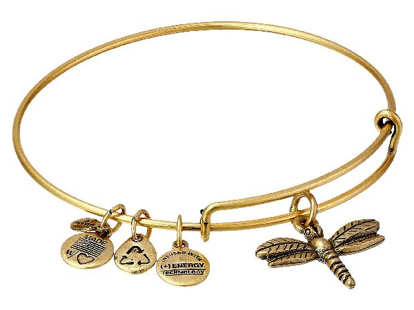 Alex And Ani Dragonfly Charm Bangle In Rafaelian Gold Finish