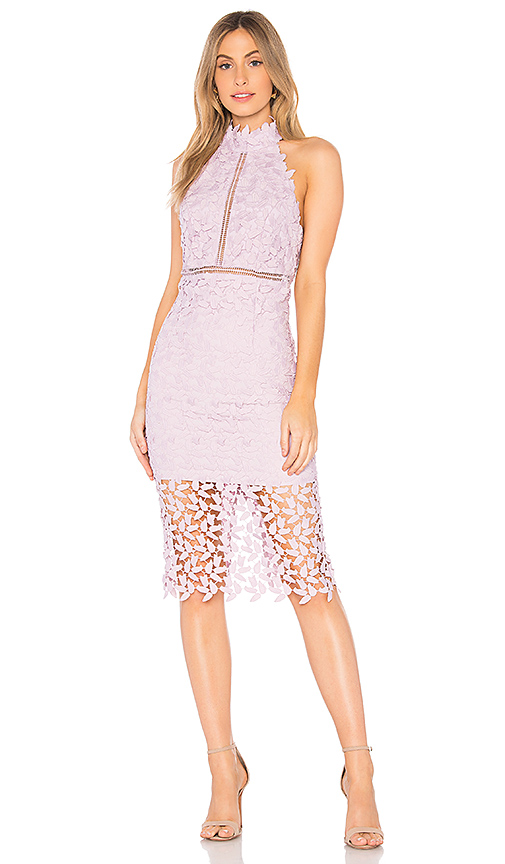 Gemma Sleeveless Halter Lace Guipure Cocktail Dress In Orchid