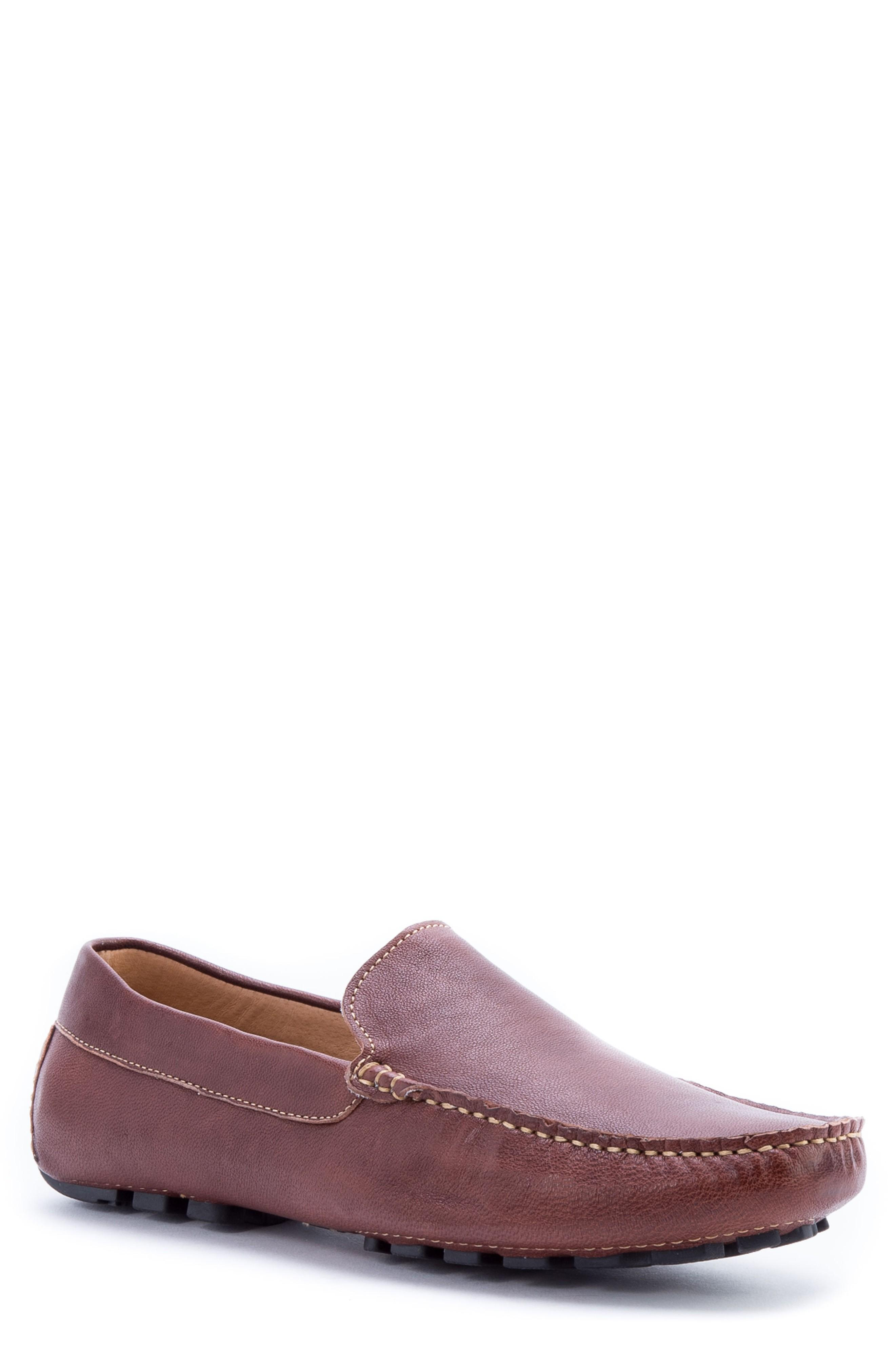 Zanzara Picasso 3 Moc Toe Driving Loafer In Brown Leather