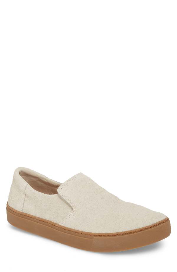 Toms Lomas Slip-on Suede Sneakers In Birch Shaggy Suede/ Gum