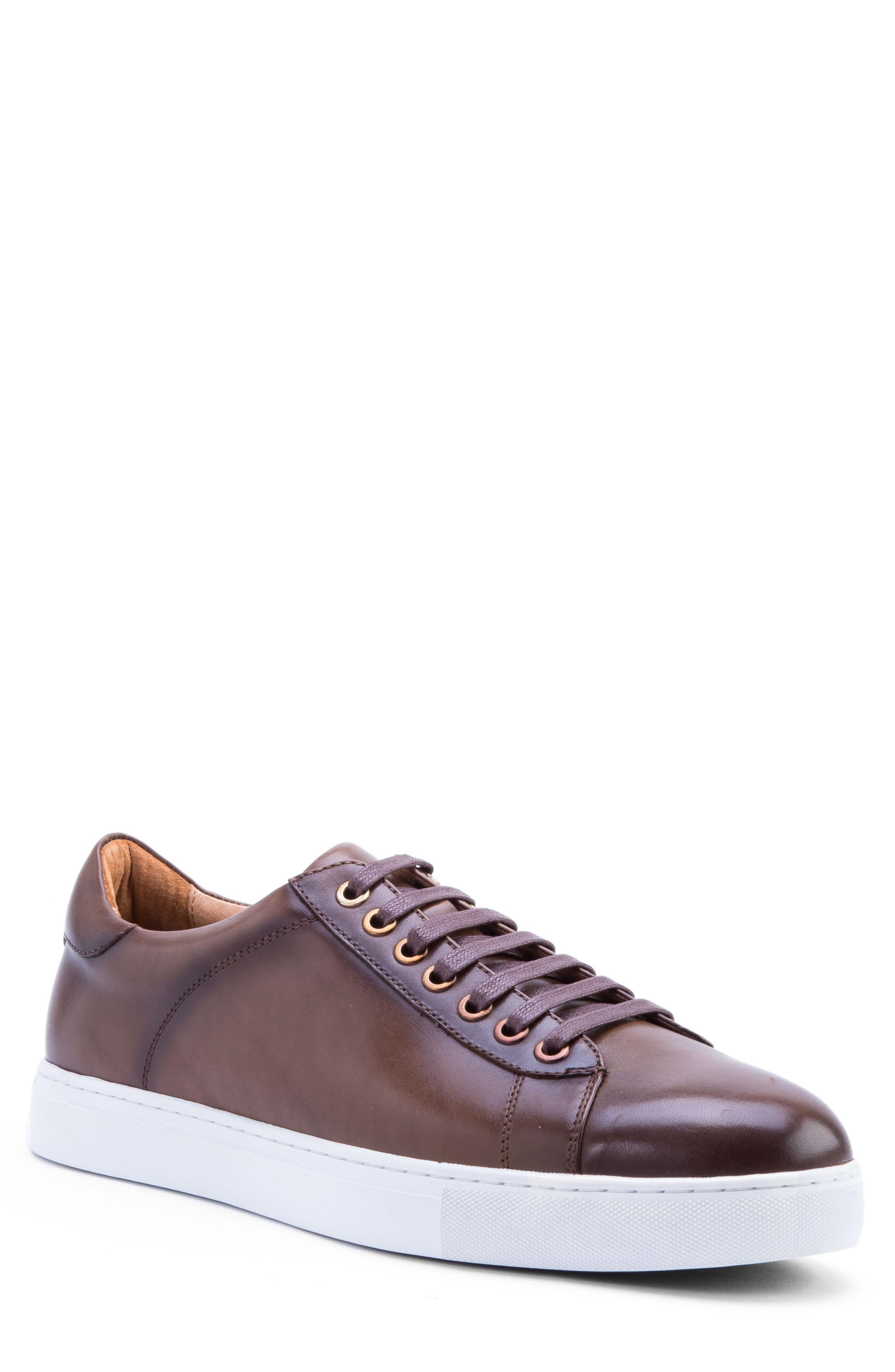 Zanzara Music Low Top Sneaker In Brown Leather