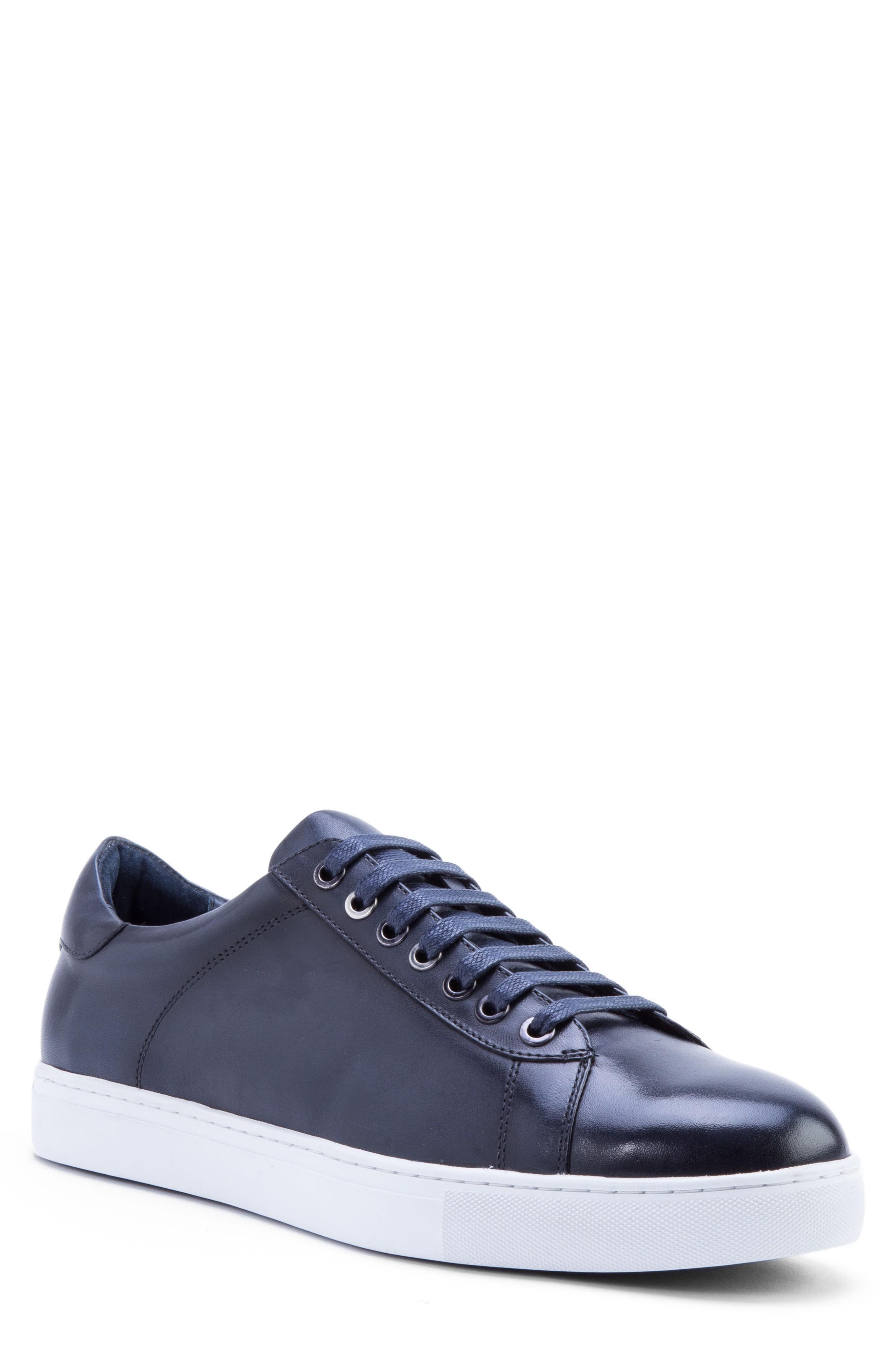 Zanzara Music Low Top Sneaker In Navy Leather