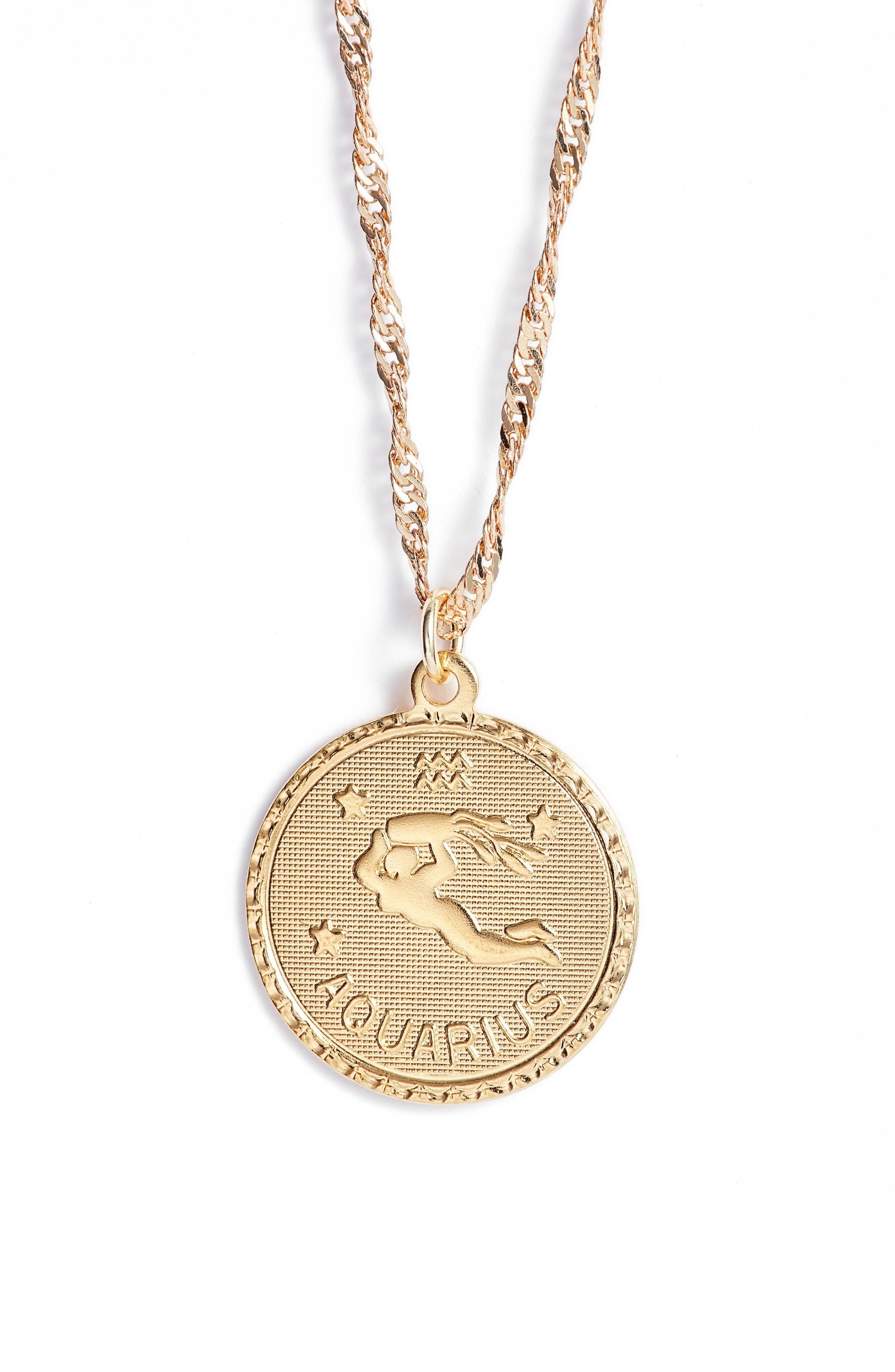 Cam Ascending Zodiac Medallion Necklace In Aquarius