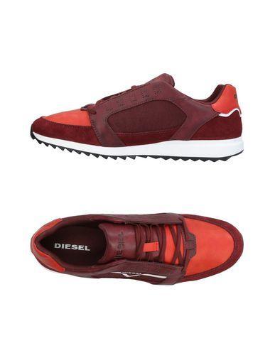 Diesel Sneakers In Maroon