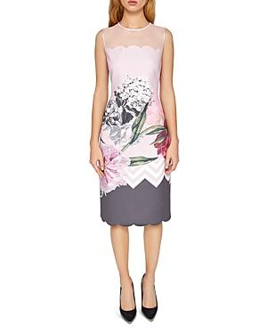 Ted Baker Arionah Palace Gardens Scalloped Dress In Dusky Pink