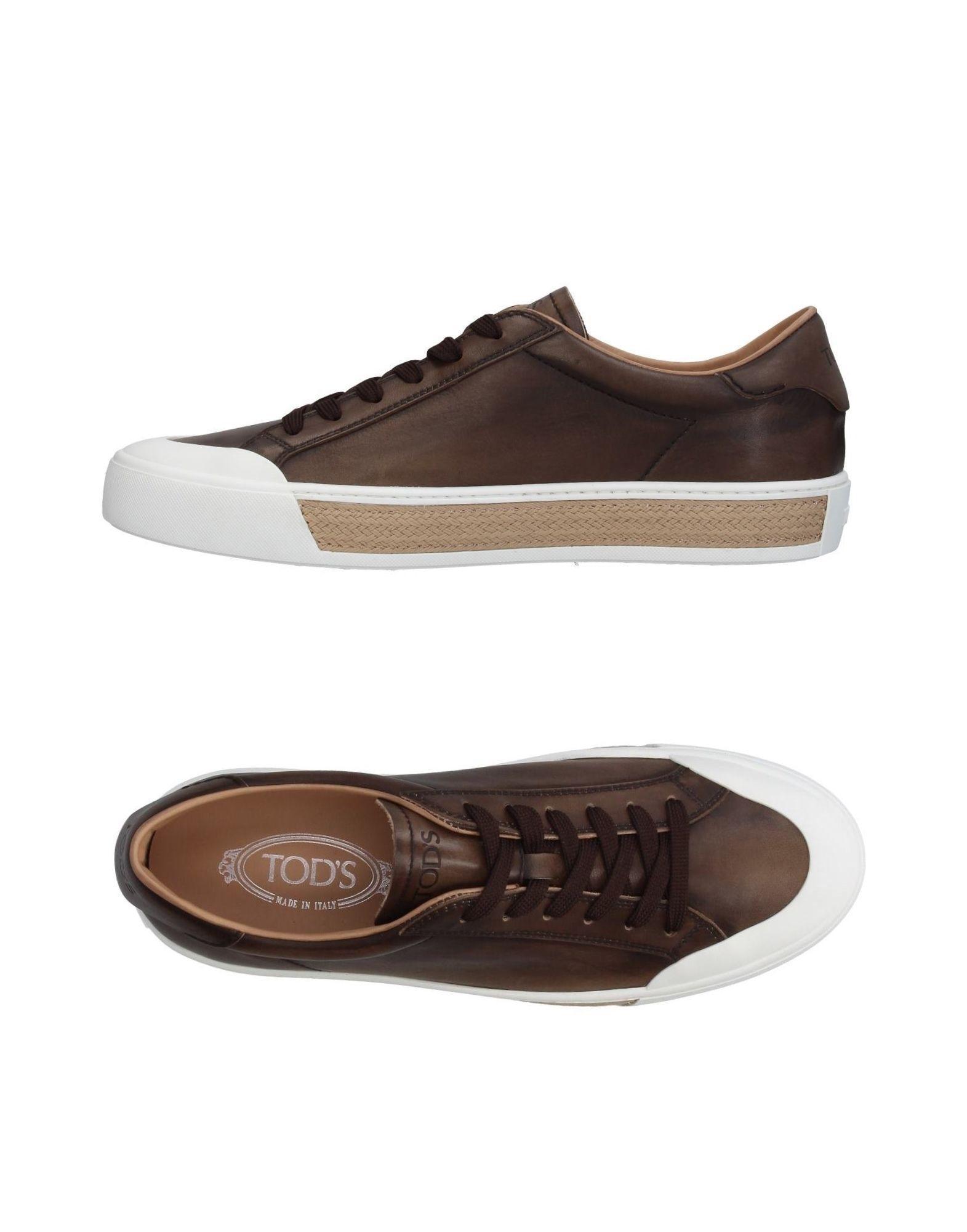 Tod's Sneakers In Khaki