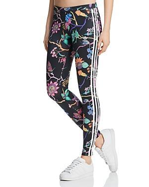 5771b5bca331f Adidas Originals Poisonous Garden Leggings In Black | ModeSens