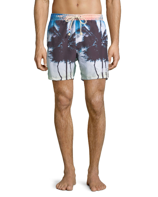 Sol Angeles Off Tropic Palm Tree Swim Trunks In Multi