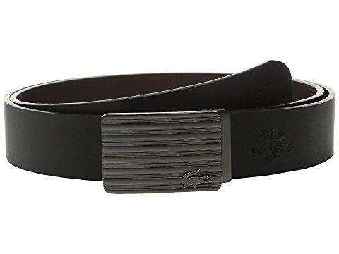 Lacoste Premium Leather Interchangeable Buckle Belt Set In Black/brown