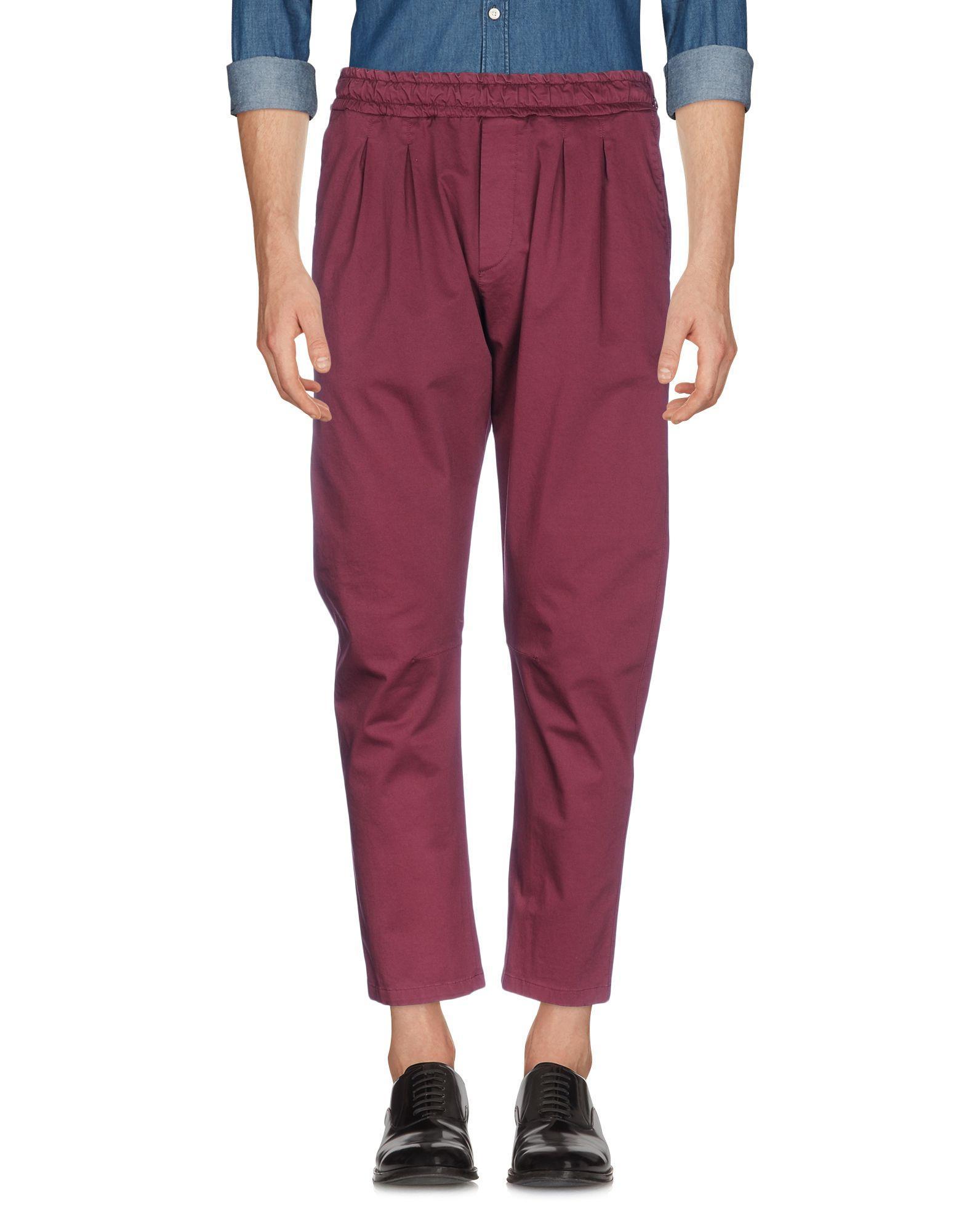 Low Brand Casual Pants In Deep Purple