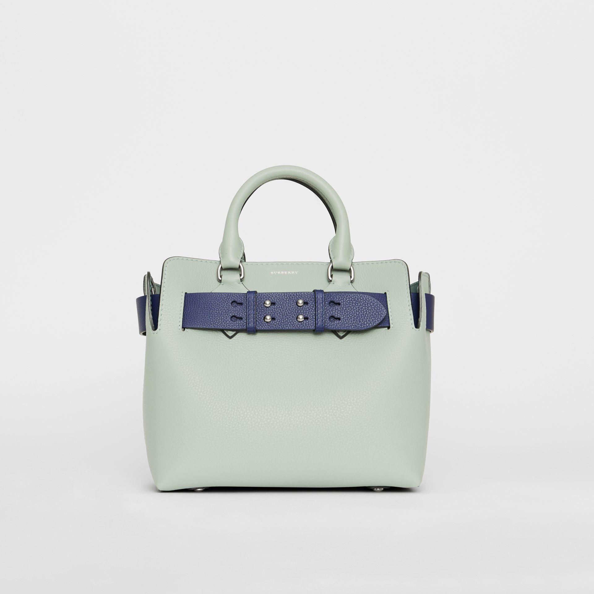 c69dc0ce4c1 The Small Leather Belt Bag