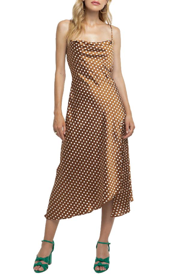 Astr The Label Polka Dot Midi Slip Dress In Caramel Dot