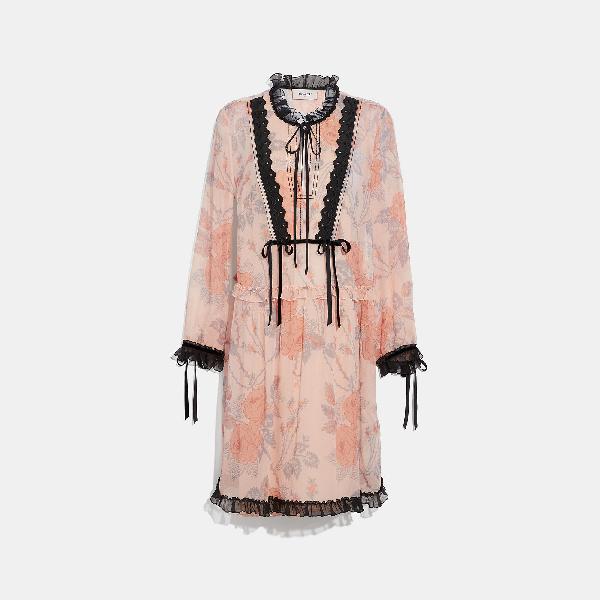 Coach Rose-Print Long-Sleeve Silk Short Dress In Pink