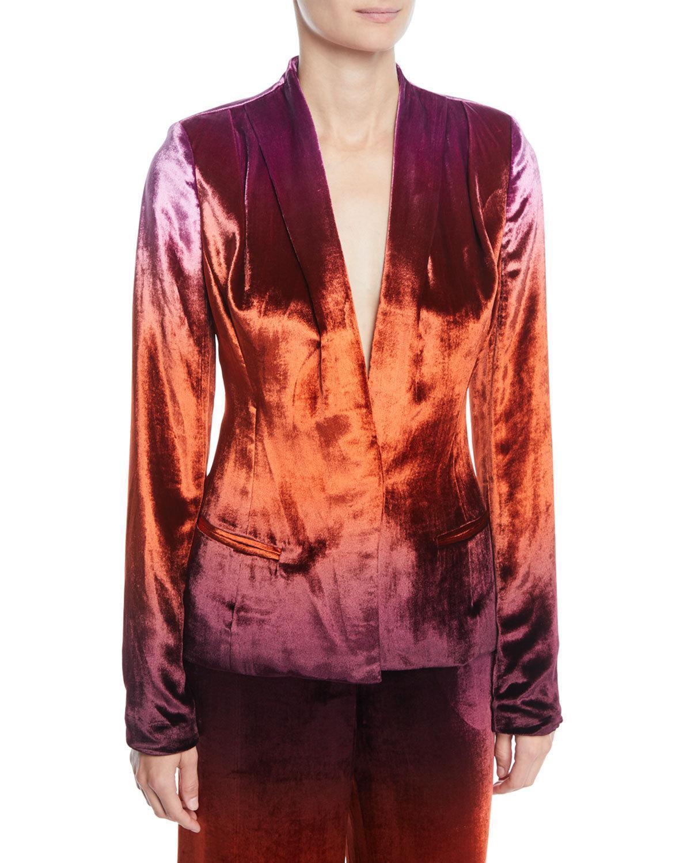 Cushnie Et Ochs Shawl-collar Fitted Degrade Velvet Jacket In Brown Pattern