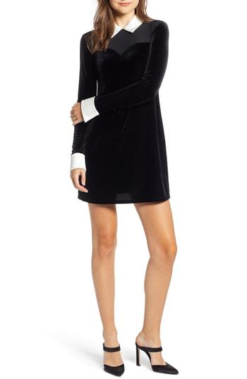 Bailey44 Dealer Collared Velvet Mini Dress In Black/ Chalk