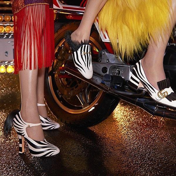 0b2858941 Gucci Lesley Zebra-AppliquÉ Leather Pumps In Black White | ModeSens